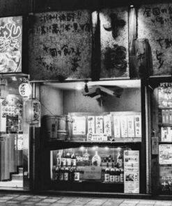 Japan Travel Photography