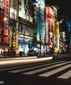 Akihabara, Tokyo Japan Travel Photograhy by Alisonfay.com